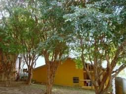 Casa à venda com 2 dormitórios em Tremembé, São paulo cod:169-IM181627