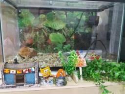 Vende se aquario