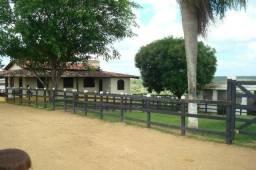 Fazenda com 20 Hectares - Casa Sede 3 Quartos
