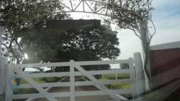 Compre Sítio de 249260 m² (Recanto Rancho Ringo, Cambé-PR)