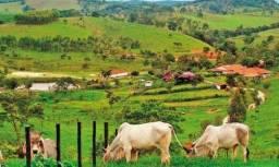 NS - Área Rurais a venda - Paraná