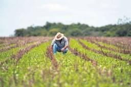 Título do anúncio: O melhor Investimento para sua empresa -Credito Rural