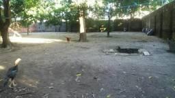 Area 1800m2 Candeias com Casa