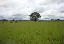 6.080 Hec em Guiratinga região de Rondonópolis(Soja)
