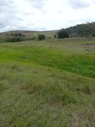 Linda fazenda em Novo Lino 55 hectares a 1 km da BR 101