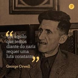 Leia Orwell e abra os olhos