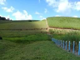 Oportunidade linda fazenda em Flexeiras com 32 hectares