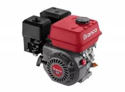 Motor p/ moenda de cana Branco 5.5 Hp- part. manual