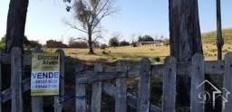 Área de campo c/ 30 hectares, Passo do Santa Fé-P. Machado-10104