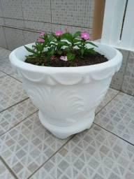 Vaso com planta de verdade novo