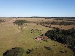 Fazenda a venda em Uberlândia, Triângulo Mineiro - Oportunidade de Investimento