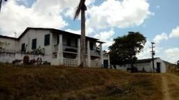 Fazenda 94,5 Ha. Pilar