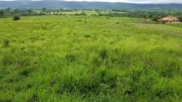 Fazenda 1130 alq. 800 pasto tocanins