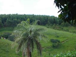 Fazenda bambui