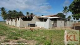 Grande oportunidade, fazenda com 37 hectares, casa sede, em Ielmo Marinho