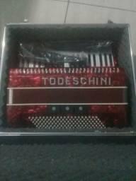 Acordeon Todeschini Eletrica120 baixos