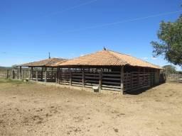Fazenda em Corinto, com área de 95 há, as margens do Rio das Velhas, Ótimo preço!