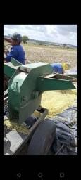 Trituradora de maniva