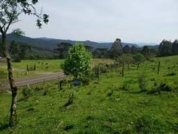 Sítio 4 Hct entre Rio Rufino/ Urupema