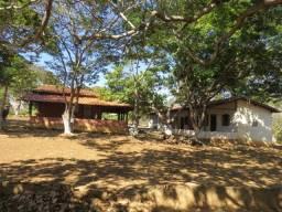 Fazenda com área de 182 há, beira do Rio das Velhas, sendo 42 em Eucalipto