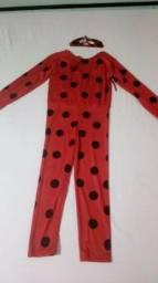 Fantasia Infantil ladybug