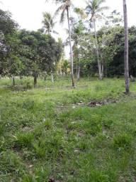 Arrendo Sitio/Chácara em Marechal Deodoro