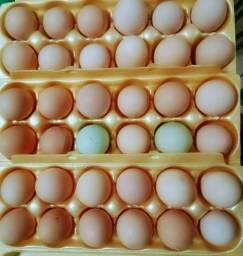 Ovos  caipiras  com gala .
