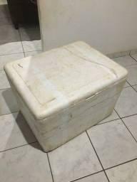 Caixa de Isopor 200L