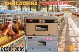 Chocadeira Chocfort (80 ovos) Direto da Fábrica - Mês de Black Friday! - 100% automática