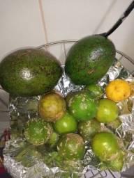 Abacate, muito bom ?