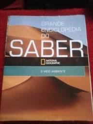 Grande Enciclopédia do Saber