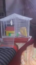Título do anúncio: Gaiola hamster completa 1° andar com casinha garrafinha e queijinho/casinha de brinde