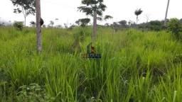 Excelente fazenda a venda no município de São Félix do Xingu