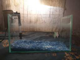Vendo aquario 40 x 17
