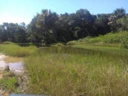 430 hectares. Camapuã. Logistica 100%