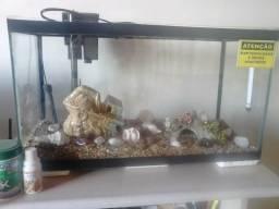 Vendo aquário completo, valor a combinar