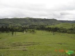 Fazenda Linda com Pastagem, Cachoeiras e Reflorestamento de Pinus
