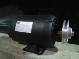 Motor elétrico trifásico 2cv