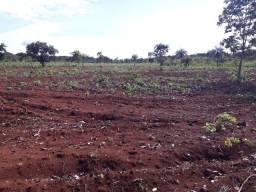 1.549 há (320 alq)Para produção de grãos e pecuária com excelente qualidade solo