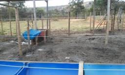 Chácara, sítio para aluguel, 5 hectares 2 quartos, sala com copa sete lagoas/mg