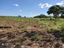 Fazenda 663 hectares município de peixe Tocantins