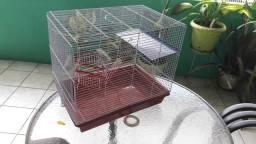 Gaiola para criação de hamister, prea da índia e muitos outros roedores
