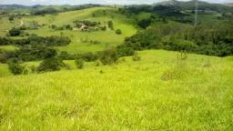 Fazenda Linda no Sul de Minas