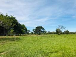 Fazenda em Mato Grosso com 253 hectares com 65% formados em pastos