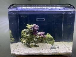 Vendo aquário com sump!