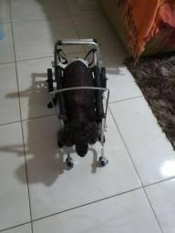 Cadeira  de rodas para cães até 7kg.