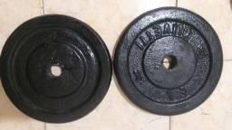 Duas anilhas de 10kg cada