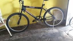 Bicicleta 450 reais