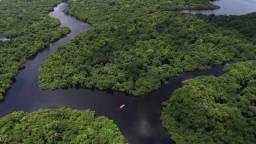 Área de Preservação Ambiental para Venda, Boca do Acre / AM