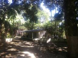 Alugo ou vendo sítio em Petrópolis para quem procura paz e saiba trabalhar a terra